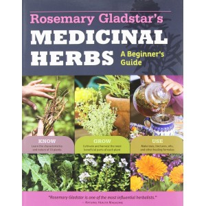 http://store.canyonrimhealthyliving.com/3161-thickbox/rosemary-gladstars-medicinal-herbs.jpg